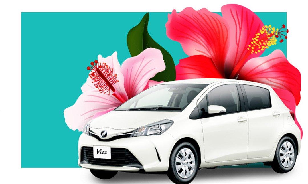 DTS 租車 - 全中文服務-建議加購:租車加值保險
