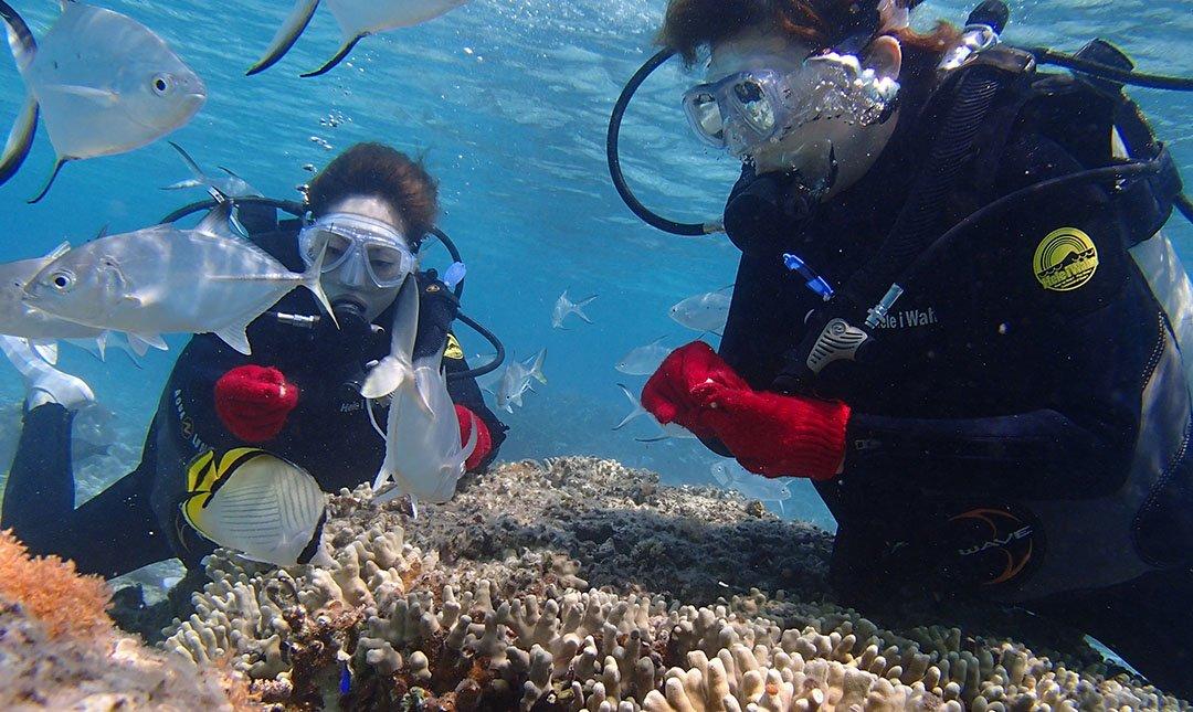 Ocean Style-水納島輕鬆潛水體驗(提前預約)