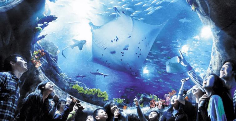 香港海洋公園門票-香港海洋公園1日電子門票